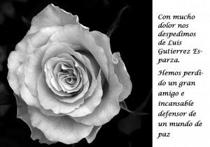 Luis gutierrez esparza_es